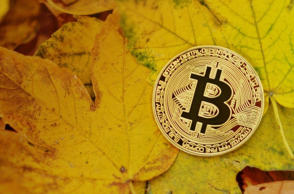 bitcoin, cryptocurrency, coins